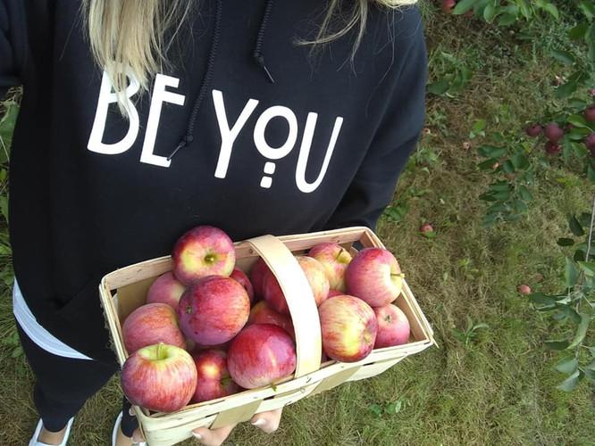 be you apples.jpg
