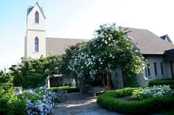 blooming courtyard 3 2012