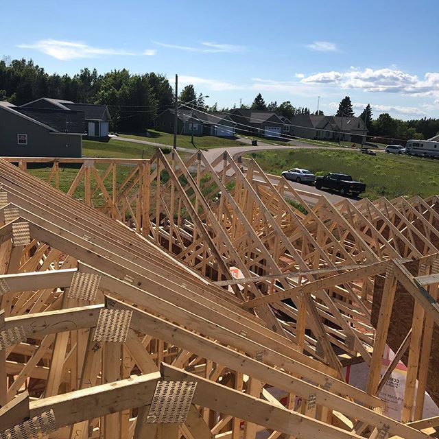 Trusses for dayzzz..