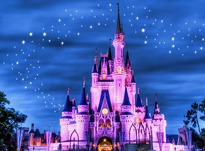 Magic-Kingdom-Castle-Night-1024x756.jpg