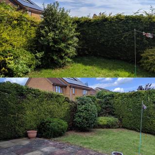 Gardener Northampton
