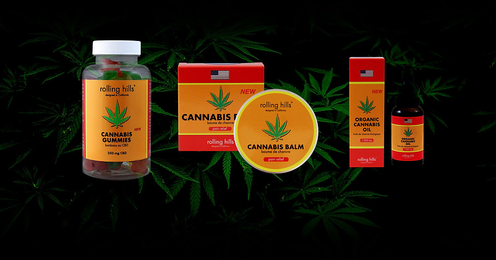 site-web-background-cannabis-group.jpg