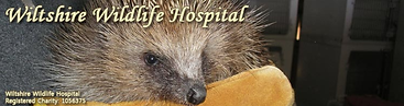 Wiltshire Wildlife Hospital.PNG