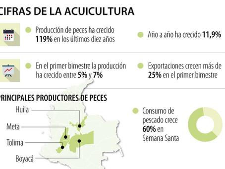 LA PRODUCCIÓN ACUÍCOLA NACIONAL CRECIÓ ENTRE 5% Y 7% EN EL PRIMER BIMESTRE DEL AÑO