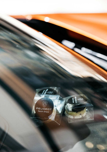 SN--NS-Peugeot---59.jpg