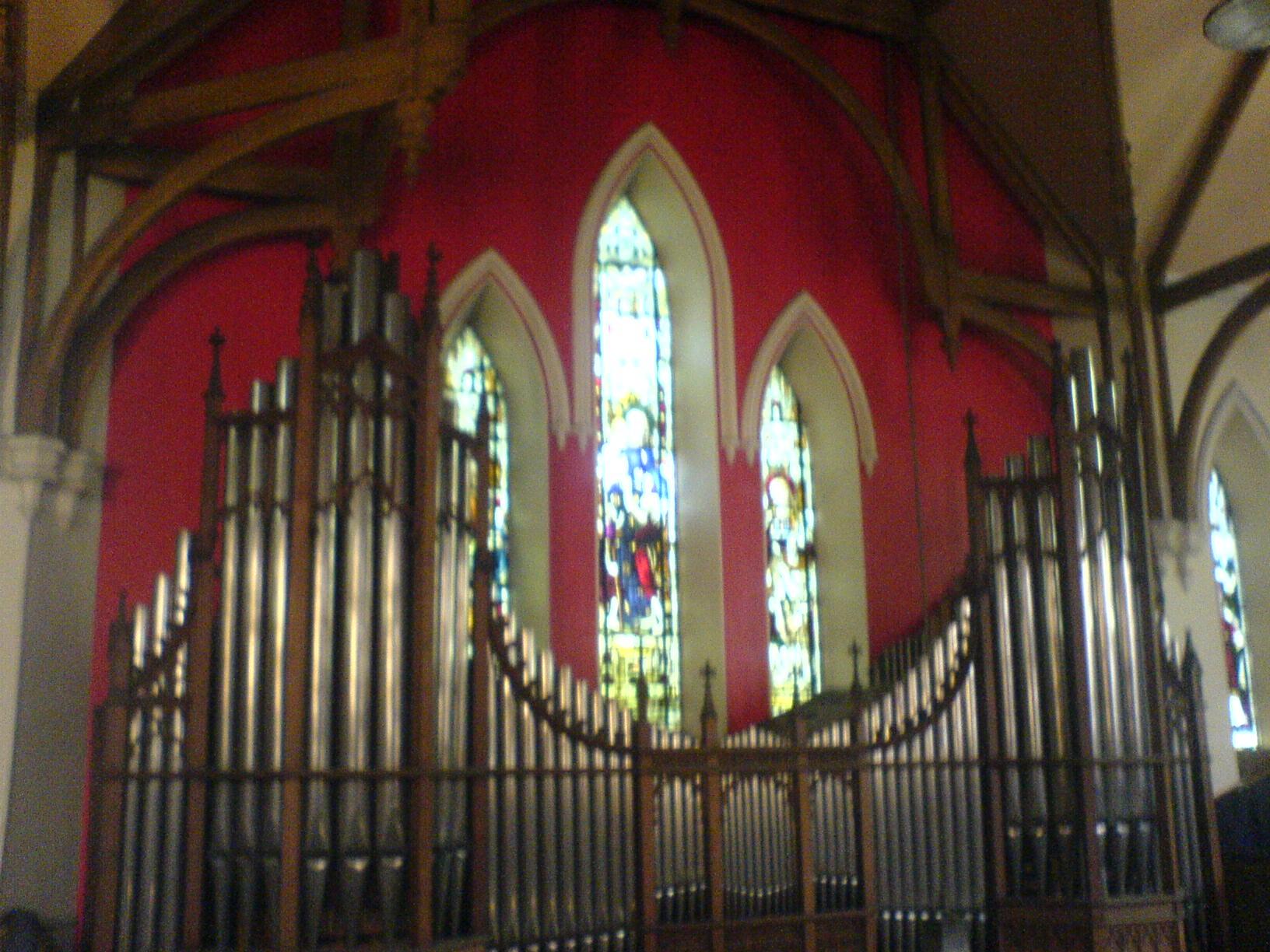 organ-1_175555612_o