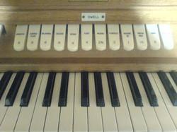 organ_443429696_o