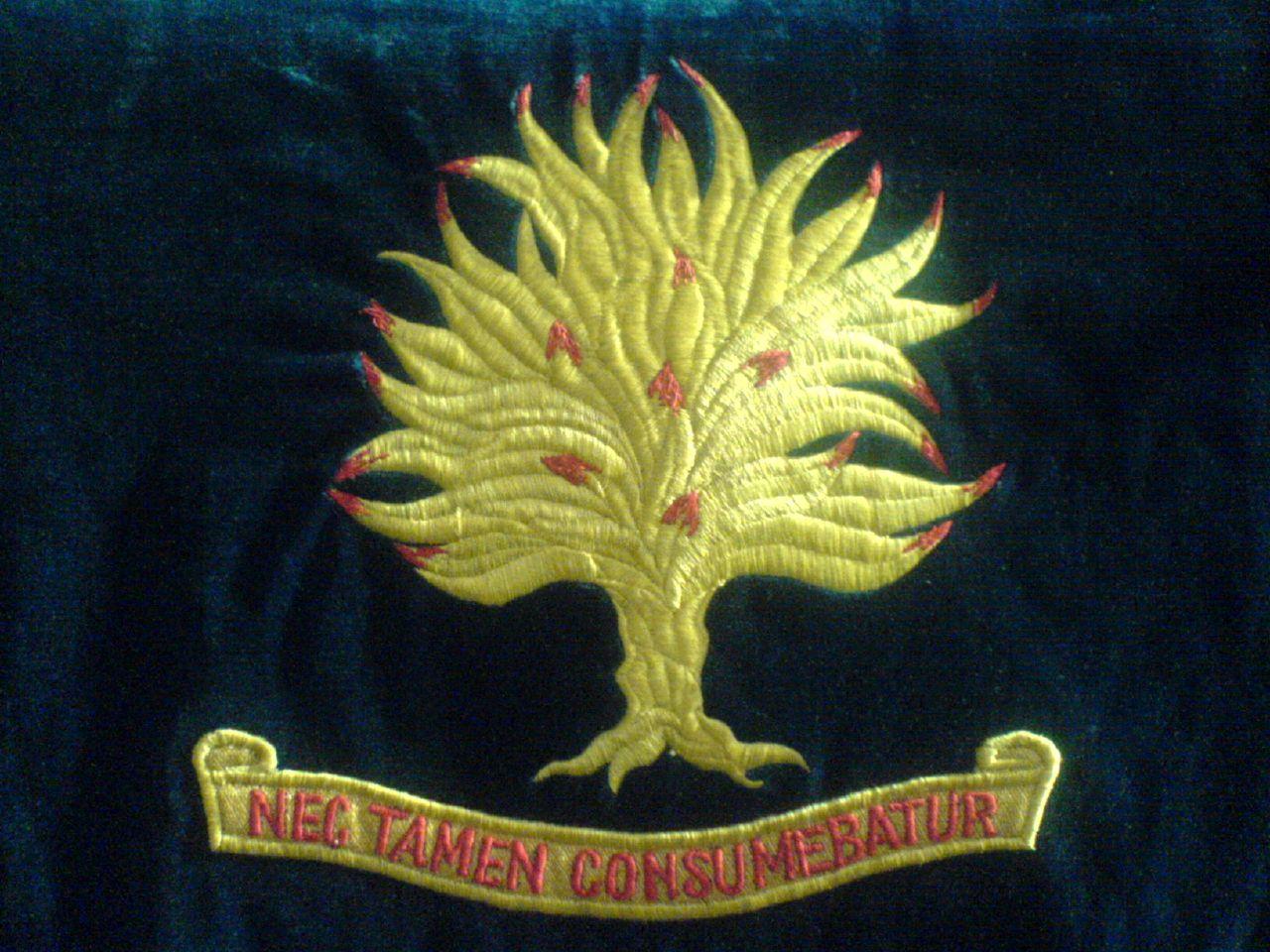 nec-tamen-consumebatur_443429524_o