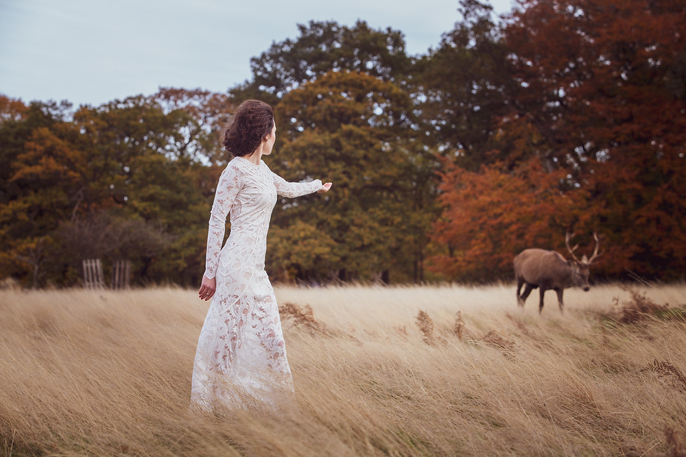 Wedding editorial in Richmond park with deers