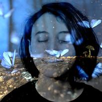 em butterfly.jpg