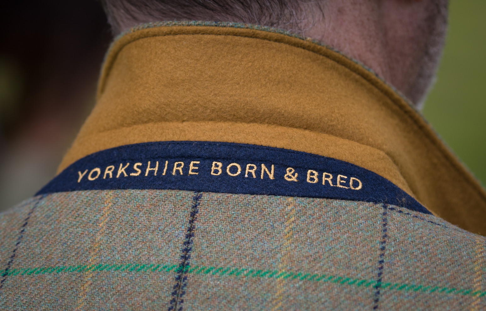 Great Yorkshire Show 2018 (010)