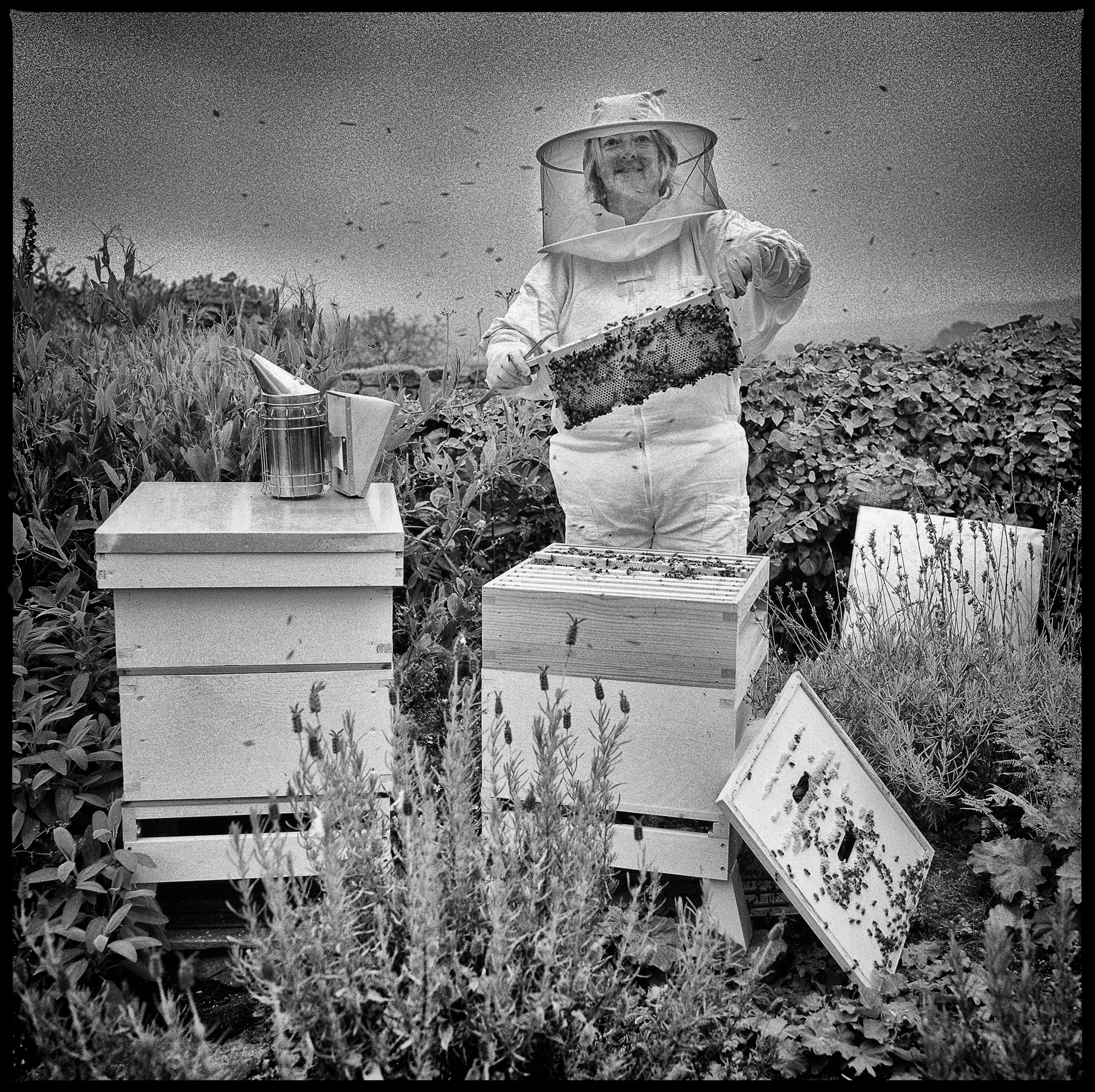 Sue Hobson, Bee Keeper