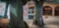 L1020557.jpg