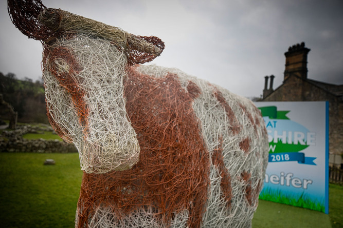 Great Yorkshire Show 2018 (001)