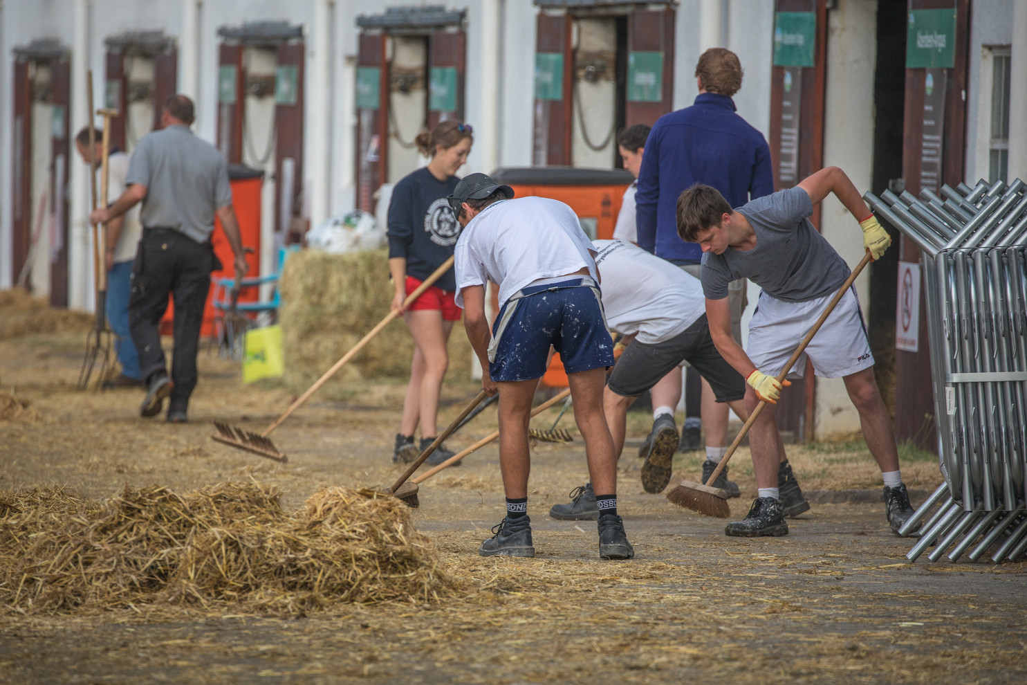Great Yorkshire Show 2018 (046)
