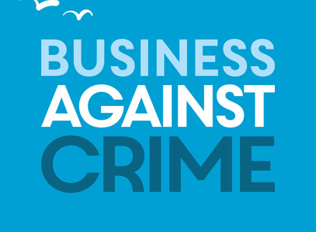 Southend Business Against Crime virtual meeting