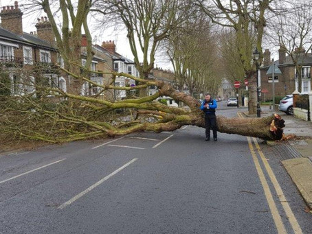 Street Rangers Spring into Action during Storm Ciara