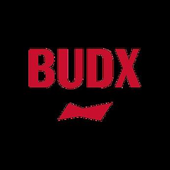 BudX Logo.png
