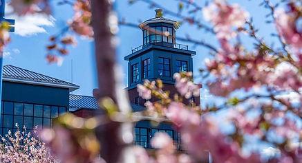 Bridgeport Harbor Marina Feature in MegaYacht News