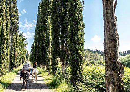 Mindful-Living-Tuscany