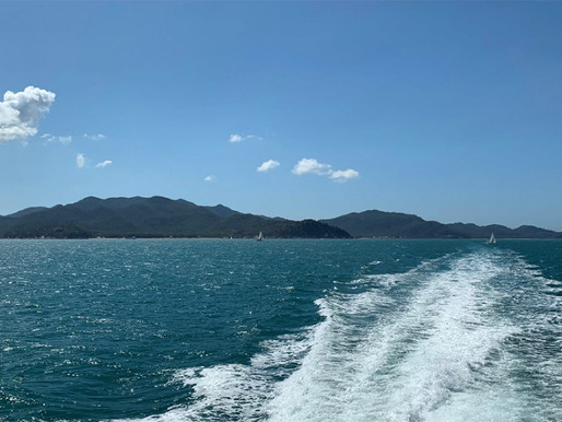 Climate resilience a priority for Magnetic Island