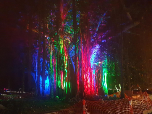 Tree lighting installed at Picnic Bay