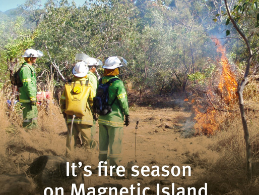 Council to conduct first bushfire mitigation burn of the season