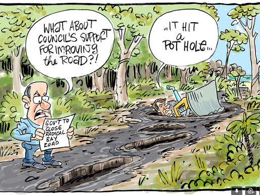 Townsville Bulletin's Cartoon