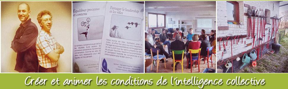 Créer et animer les conditions de l'intellignce collective - Martin Boutry - Patrice Chartrain