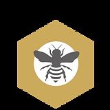 Logo Design_1.png