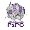 p2pc-150.jpg