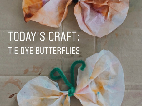 Tie Dye Butterfly