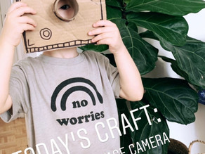 Cardboard Vintage Camera