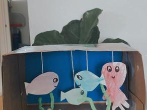 Shoebox Aquarium
