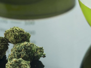 How to Select the Right Equipment for Cannabis Potency Testing