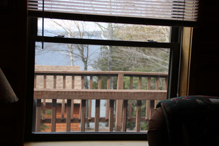 Lakeview Living Room View
