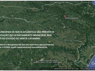 Santa Catarina estimula o planejamento da Mata Atlântica em seus municípios
