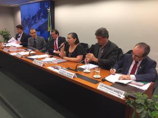 Presidente da ANAMMA defende em audiência participação dos municípios no Licenciamento.