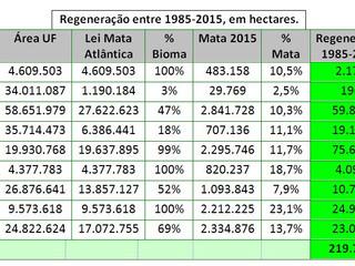 Estudo inédito traça panorama da regeneração florestal na Mata Atlântica