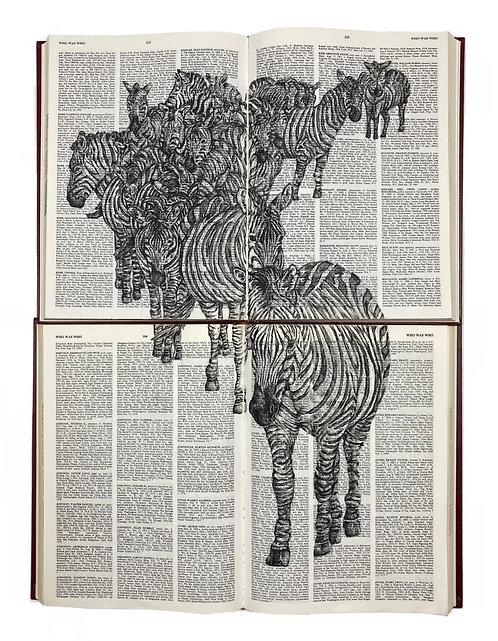 """Zebras - 20""""x 15"""""""