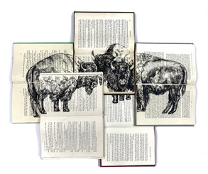 The Three Bison