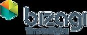 Bizagi Logo - final.png
