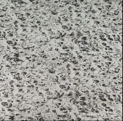 Hydrographics Film H2O-PCPL-WD-15-1 (0.5m width x 2m roll)