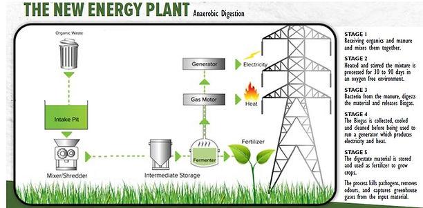 Organic Composting Process (1).jpg