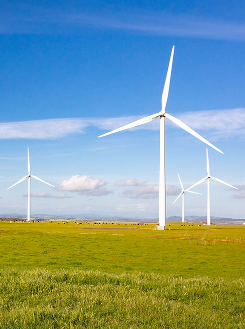 bass-coast-wind-farm-RYA5EZP_edited.jpg