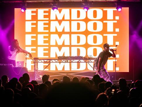 FEMDOT 6.jpg