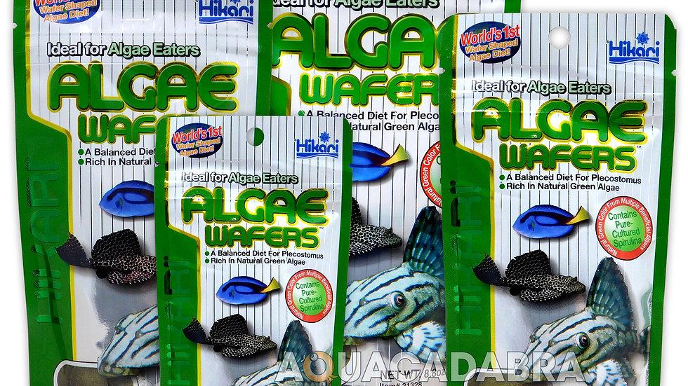 Hikari Algae Wafers- 8.8 oz