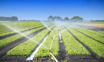 Hand Shift Irrigation