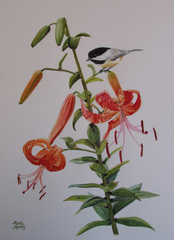 Tiger Lily & Chickadee