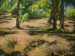 In the Shade of the Palms